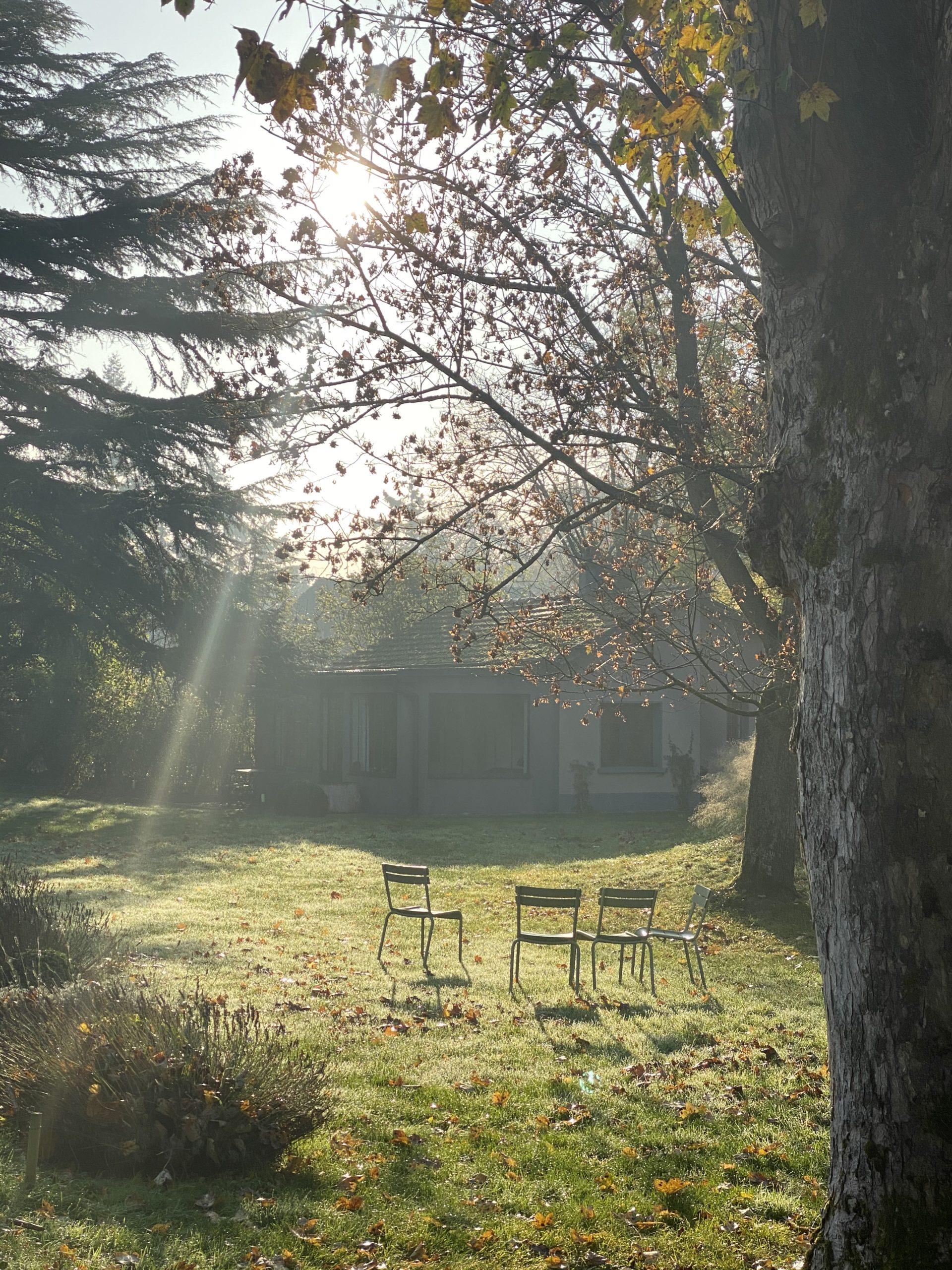 Le parc au lever du jour